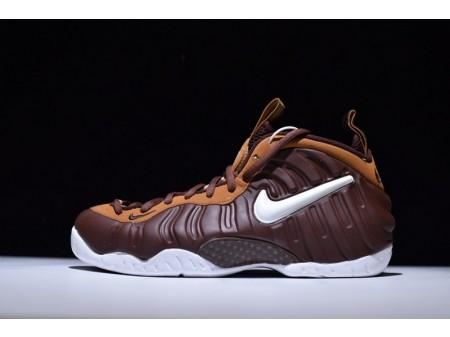 Nike Air Foamposite Pro Mocha Chocolate 624041-013 for Men